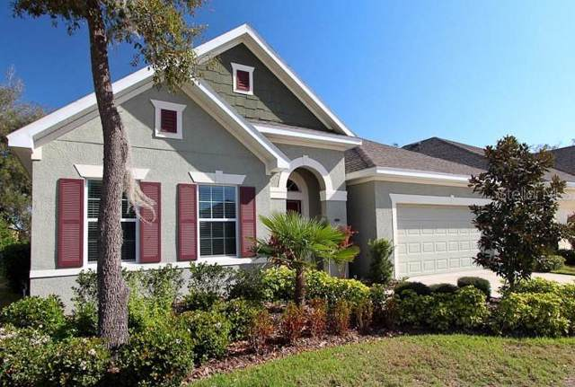 15814 Starling Water Drive, Lithia, FL 33547 (MLS #T3207338) :: The Brenda Wade Team