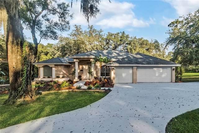 217 S Riverhills Drive, Temple Terrace, FL 33617 (MLS #T3207390) :: Cartwright Realty