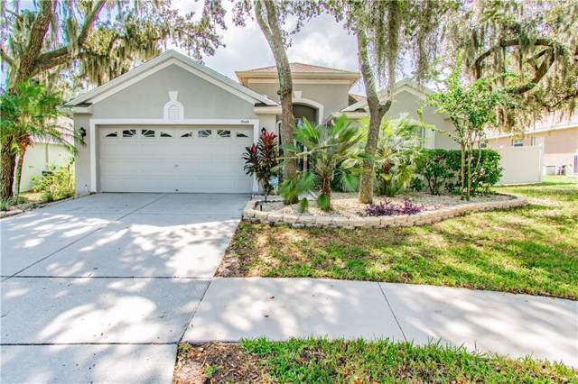11149 Bridgecreek Drive, Riverview, FL 33569 (MLS #T3207480) :: The Robertson Real Estate Group