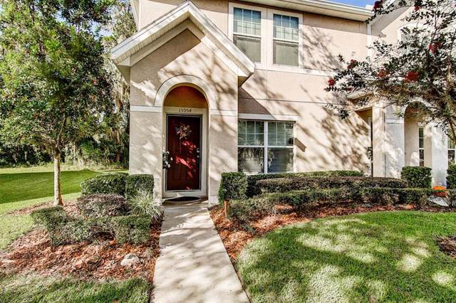 15954 Fishhawk View Drive, Lithia, FL 33547 (MLS #T3207546) :: The Brenda Wade Team