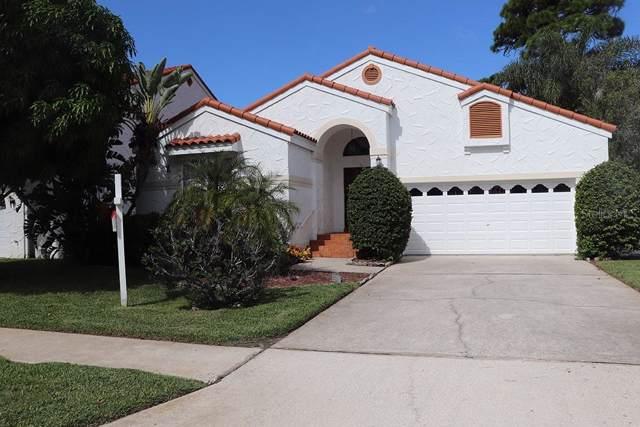 2833 La Concha Drive, Clearwater, FL 33762 (MLS #T3207560) :: 54 Realty