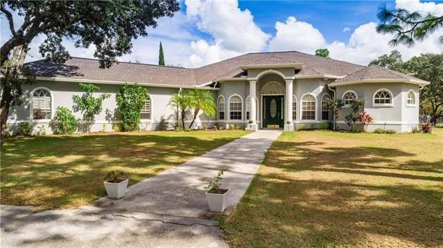 12124 Squeeze Avenue, Brooksville, FL 34614 (MLS #T3207733) :: Griffin Group