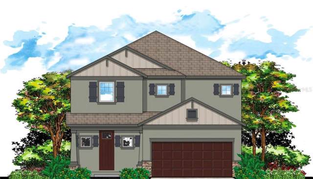 2510 W Curtis Street, Tampa, FL 33614 (MLS #T3207768) :: Team Bohannon Keller Williams, Tampa Properties