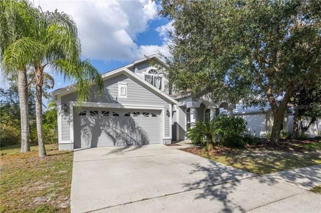 10118 Arbor Run Drive, Tampa, FL 33647 (MLS #T3207848) :: Team Bohannon Keller Williams, Tampa Properties
