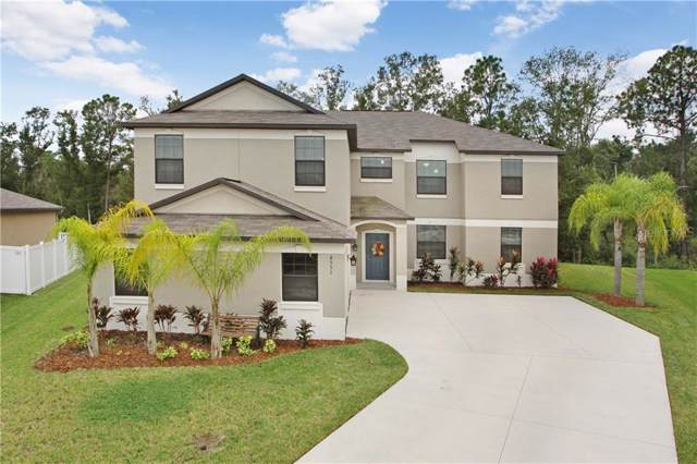 6551 Paden Wheel Street, Zephyrhills, FL 33541 (MLS #T3207859) :: The Robertson Real Estate Group