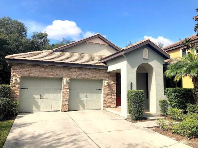 20334 Chestnut Grove Drive, Tampa, FL 33647 (MLS #T3207926) :: Team Bohannon Keller Williams, Tampa Properties