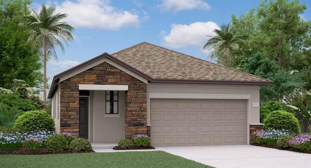 8927 Flourish Drive, Land O Lakes, FL 34637 (MLS #T3207981) :: Griffin Group