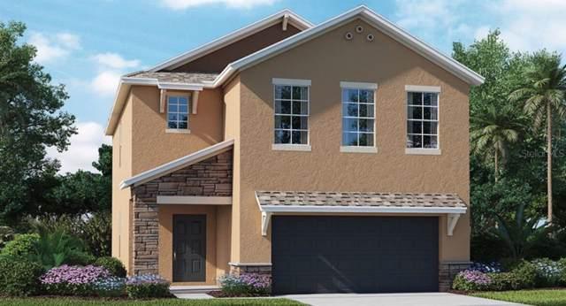 8935 Flourish Drive, Land O Lakes, FL 34637 (MLS #T3208016) :: Griffin Group