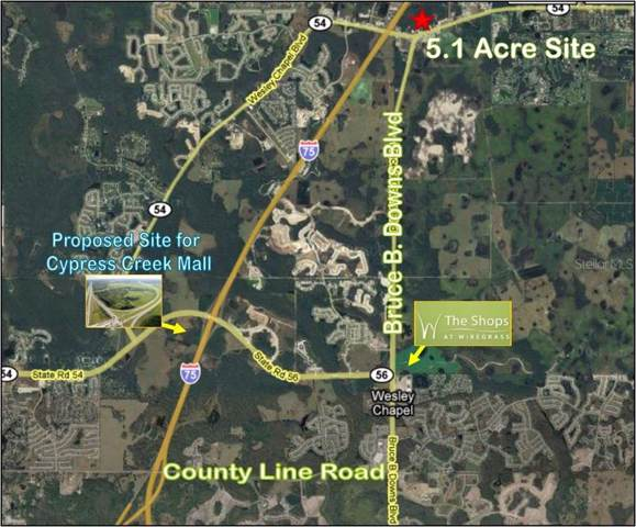 State Road 54, Wesley Chapel, FL 33545 (MLS #T3208026) :: Southern Associates Realty LLC