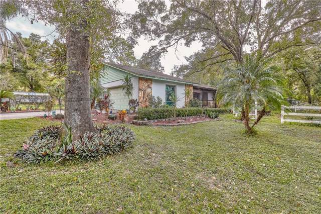 18007 Hanna Rd, Lutz, FL 33549 (MLS #T3208161) :: The Comerford Group