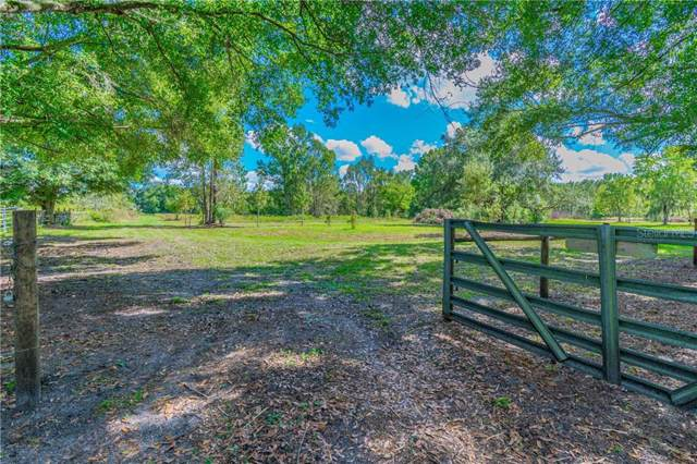 Garland Branch Road, Dover, FL 33527 (MLS #T3208172) :: Team Borham at Keller Williams Realty