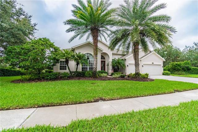 18928 Chaville Road, Lutz, FL 33558 (MLS #T3208243) :: Rabell Realty Group