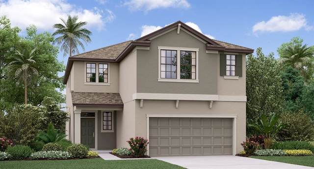 8941 Flourish Drive, Land O Lakes, FL 34637 (MLS #T3208285) :: The Robertson Real Estate Group