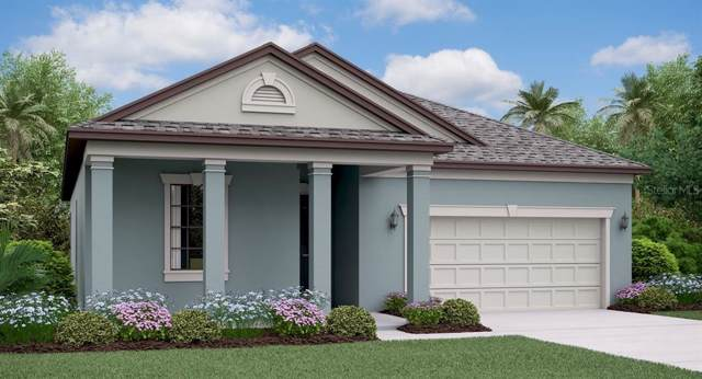 8867 Flourish Drive, Land O Lakes, FL 34637 (MLS #T3208289) :: The Robertson Real Estate Group