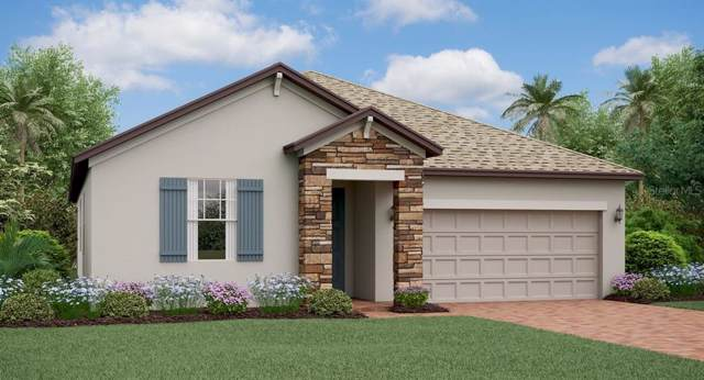 8843 Flourish Drive, Land O Lakes, FL 34637 (MLS #T3208290) :: The Robertson Real Estate Group