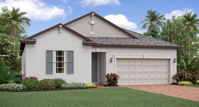 9133 Shadyside Lane, Land O Lakes, FL 34637 (MLS #T3208297) :: Griffin Group