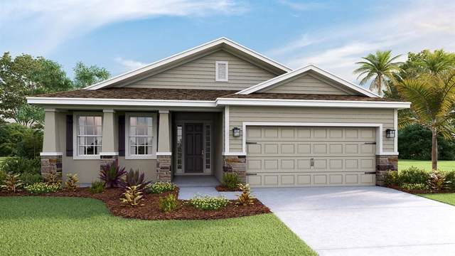 12421 Eastpointe Drive, Dade City, FL 33525 (MLS #T3208348) :: Lock & Key Realty