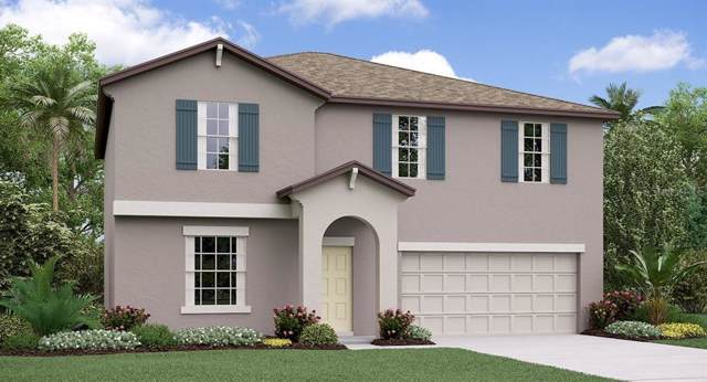 39898 Dawson Chase Drive, Zephyrhills, FL 33540 (MLS #T3208400) :: The Robertson Real Estate Group