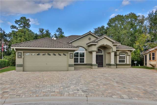 6932 Cozumel Court, Land O Lakes, FL 34637 (MLS #T3208406) :: Rabell Realty Group