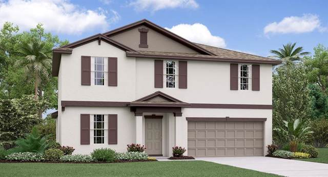 39850 Dawson Chase Drive, Zephyrhills, FL 33540 (MLS #T3208409) :: The Robertson Real Estate Group
