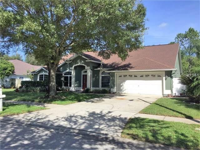 17509 Isbell Lane, Odessa, FL 33556 (MLS #T3208418) :: Team Bohannon Keller Williams, Tampa Properties