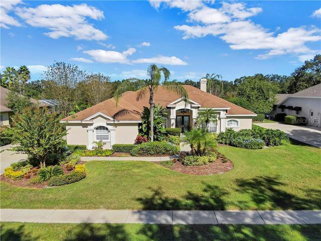 6008 Hammock Hill Avenue, Lithia, FL 33547 (MLS #T3208446) :: Team Bohannon Keller Williams, Tampa Properties