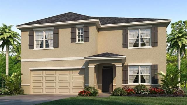 16448 Little Garden Drive, Wimauma, FL 33598 (MLS #T3208539) :: The Duncan Duo Team