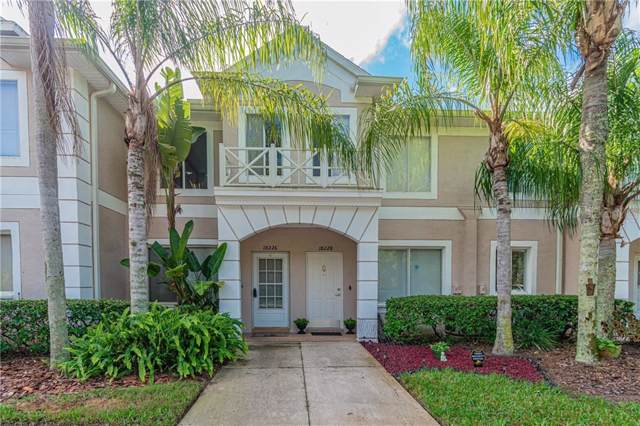 18226 Paradise Point Drive, Tampa, FL 33647 (MLS #T3208546) :: Cartwright Realty
