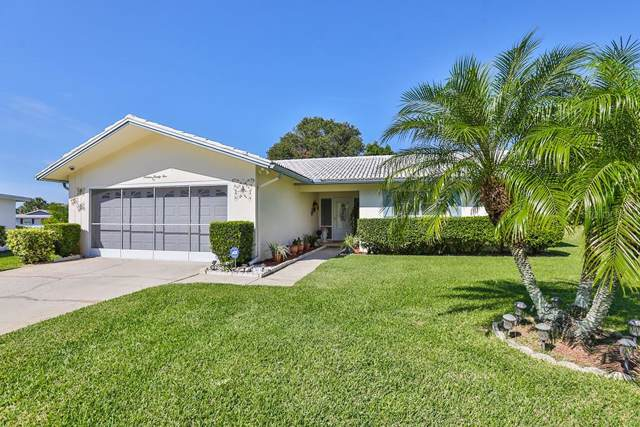 1625 Byrnedale Court, Palm Harbor, FL 34684 (MLS #T3208668) :: The Robertson Real Estate Group
