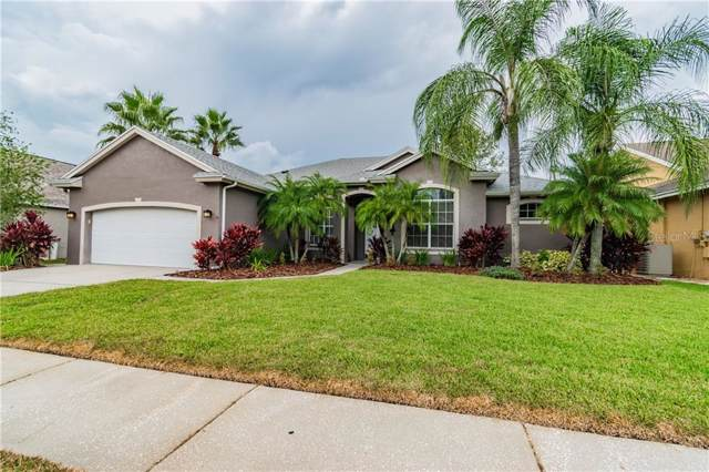 18307 Oriole Street, Lutz, FL 33558 (MLS #T3208698) :: Rabell Realty Group
