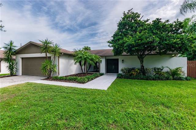 12103 Cypress Hollow Place, Tampa, FL 33624 (MLS #T3208701) :: 54 Realty