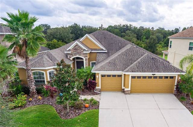 10517 Mistflower Lane, Tampa, FL 33647 (MLS #T3208718) :: Cartwright Realty