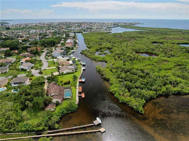 5623 Hull Court, New Port Richey, FL 34652 (MLS #T3208759) :: GO Realty