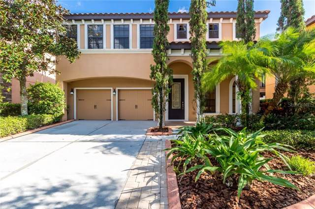 20327 Chestnut Grove Drive, Tampa, FL 33647 (MLS #T3208812) :: Team Bohannon Keller Williams, Tampa Properties