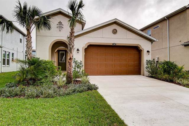 29010 Trevi Place, Wesley Chapel, FL 33543 (MLS #T3208897) :: Gate Arty & the Group - Keller Williams Realty Smart