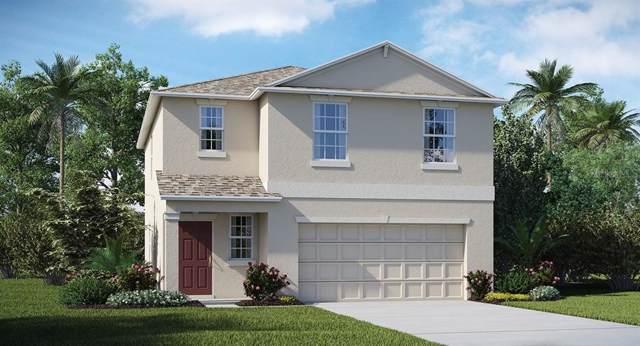 17014 Yellow Pine Street, Wimauma, FL 33598 (MLS #T3208991) :: The Light Team