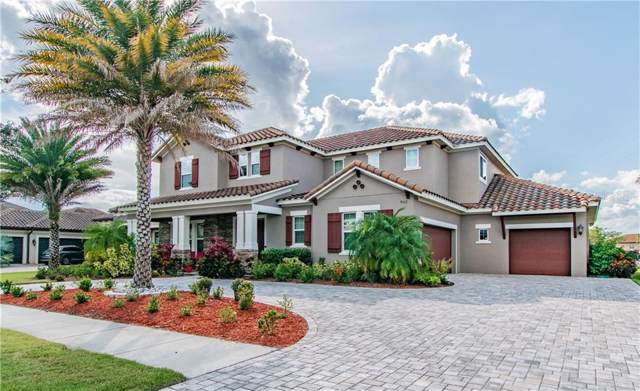 9107 Tillinghast Drive, Tampa, FL 33626 (MLS #T3208994) :: Griffin Group