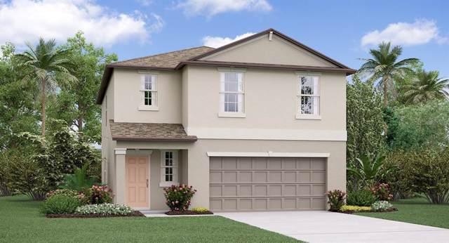 10444 Carloway Hills Drive, Wimauma, FL 33598 (MLS #T3209055) :: The Light Team