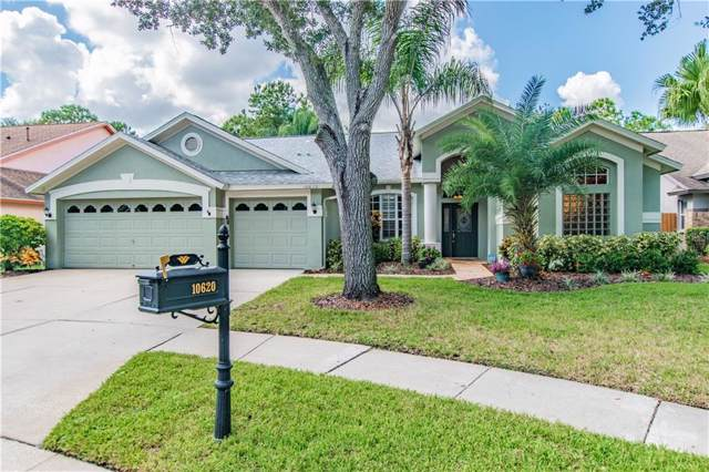 10620 Chambers Drive, Tampa, FL 33626 (MLS #T3209079) :: Griffin Group