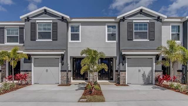 8733 Daydream Street, Sarasota, FL 34238 (MLS #T3209112) :: McConnell and Associates