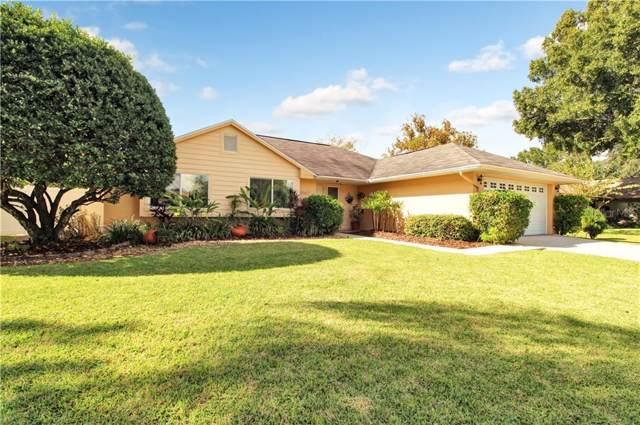 15167 Springview Street, Tampa, FL 33624 (MLS #T3209131) :: Lucido Global