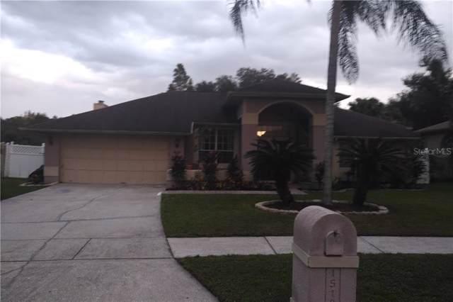 15103 Redvale Drive, Tampa, FL 33625 (MLS #T3209144) :: Team Bohannon Keller Williams, Tampa Properties