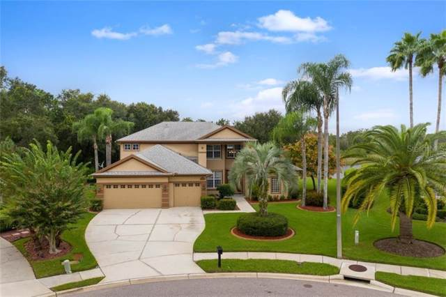 6119 Chene Court, Lutz, FL 33558 (MLS #T3209190) :: Rabell Realty Group