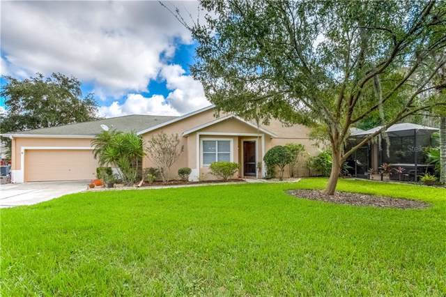 7239 Cleopatra Drive, Land O Lakes, FL 34637 (MLS #T3209208) :: Lovitch Realty Group, LLC