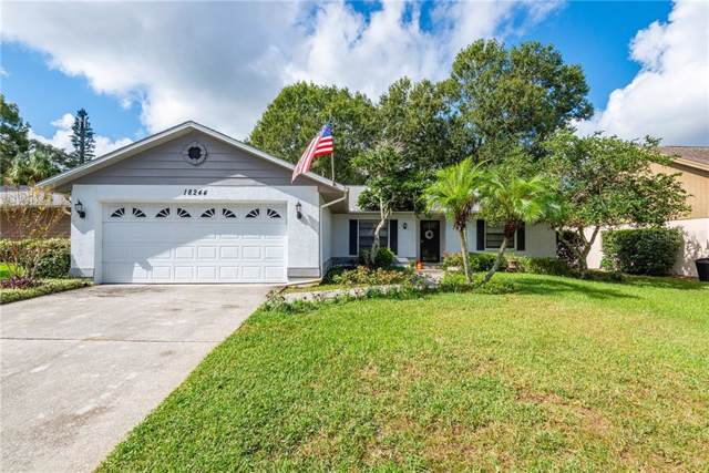18244 Swan Lake Drive, Lutz, FL 33549 (MLS #T3209283) :: Rabell Realty Group