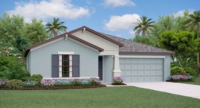 6574 Mineral Springs Road, New Port Richey, FL 34653 (MLS #T3209375) :: Griffin Group