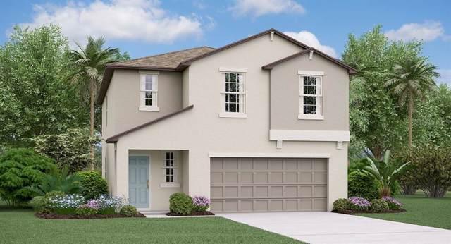 15426 Broad Brush Drive, Ruskin, FL 33573 (MLS #T3209424) :: Team Bohannon Keller Williams, Tampa Properties