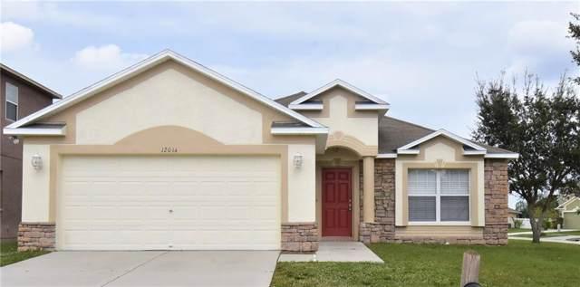 12014 Hampshire Field Court, Riverview, FL 33579 (MLS #T3209456) :: Team Bohannon Keller Williams, Tampa Properties