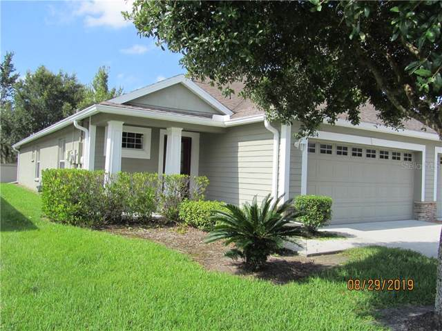 31904 Turkeyhill Drive, Wesley Chapel, FL 33543 (MLS #T3209490) :: Lovitch Realty Group, LLC