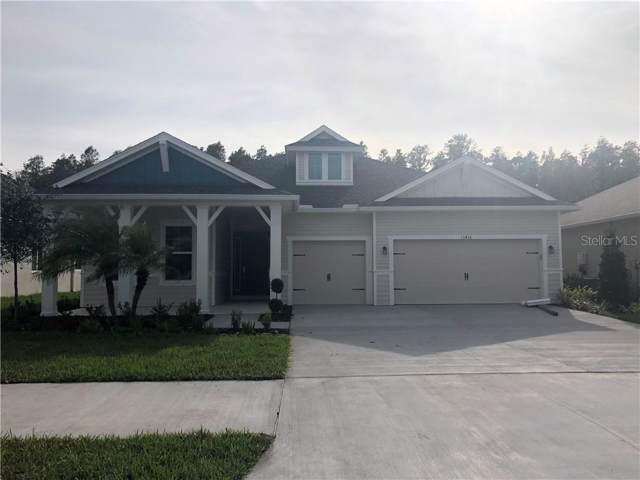 15416 Aviles Parkway, Odessa, FL 33556 (MLS #T3209538) :: Lovitch Realty Group, LLC